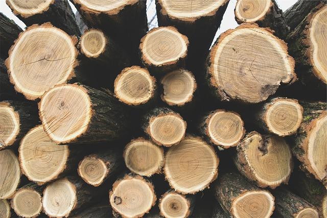 prix du st re de bois choisir le bois de chauffage pour. Black Bedroom Furniture Sets. Home Design Ideas